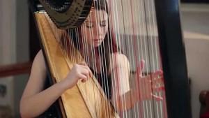 3.和鋼琴搭配的柔軟豎琴